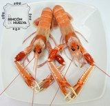 Cigalas de Huelva Tronco C1 (6 a 8 piezas en kilo)