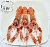 Cigala de Huelva Gorda C3 (12 a 17 piezas en kilo)